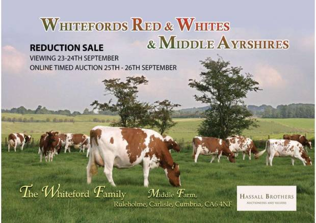 Catalogue now available for Middle sale