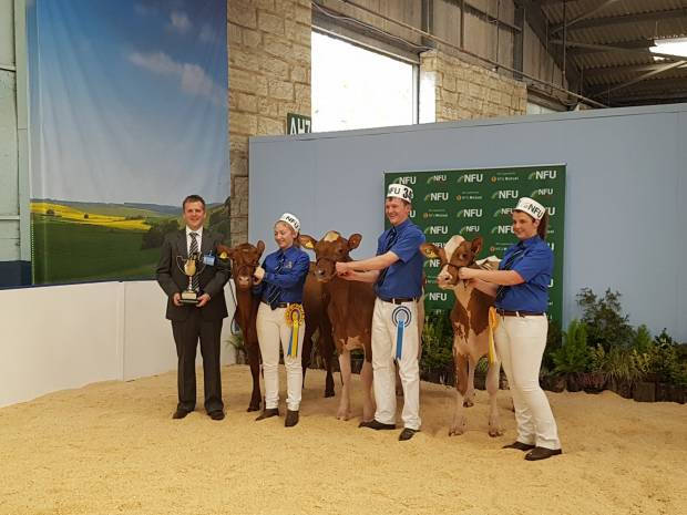ABAB Ayrshire Showmanship winners