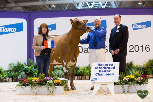 Colin & Katie Davidson with Interbreed judge Ashley Fleming