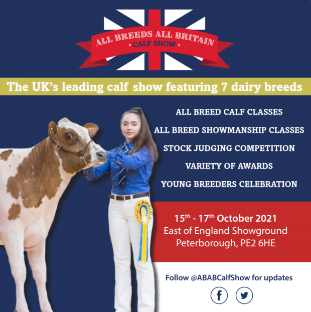 All Breeds all Britain Calf Show