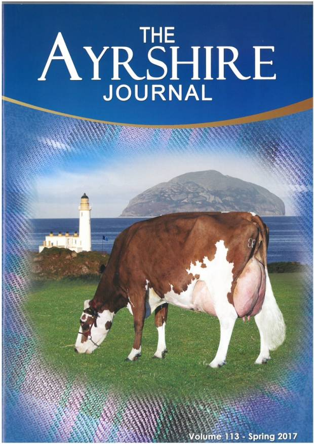 Spring Journal available to view