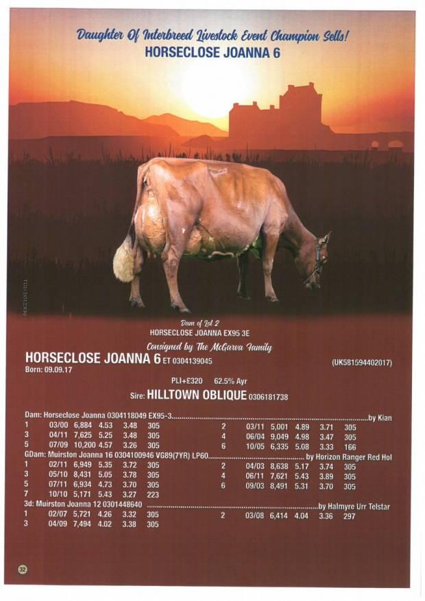 Horseclose Joanna 6 Sells