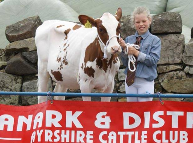 First Prize Junior Handler - Lucy Graham with her first prize junior calf and Reserve Champion calf -  Swaites Poly Ann (Swaites Dynamite) from J Adamson & Son