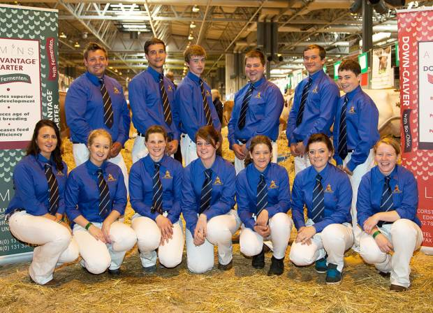 Ayrshire Young Breeders