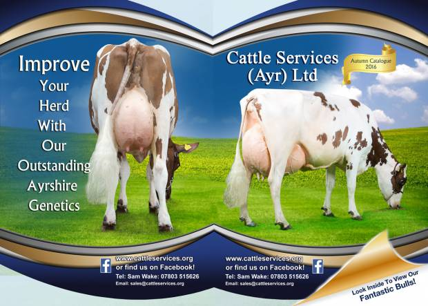 Cattle Services New August Catalogue Is Out Now