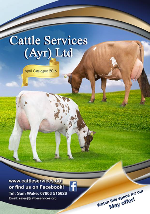 New Cattle Services Brochure Out Now & Watch This Space For Our Latest May Offer