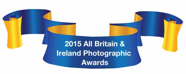 Winners Of The Heifer In-Milk Section Of The 2015 Photographic Awards Announced