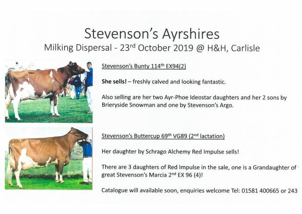 Stevenson's Milking Dispersal Sale - Catalogue available now