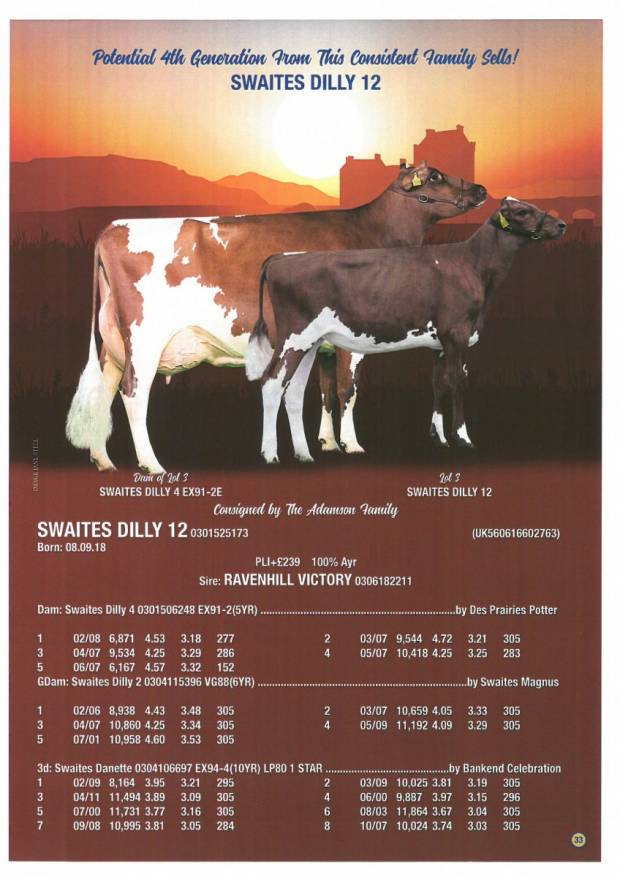 Swaites Dilly 12 Sells