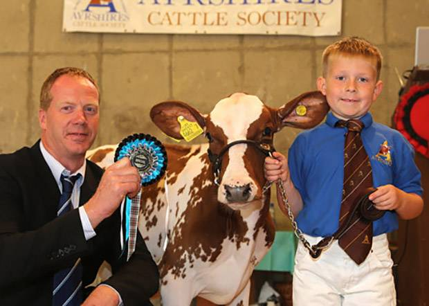 Six-year-old Cameron Carson, Ballymena, won the novice showmanship class and was honourable mention handler. He was congratulated by Peter Berresford. Picture by Jane Steel.