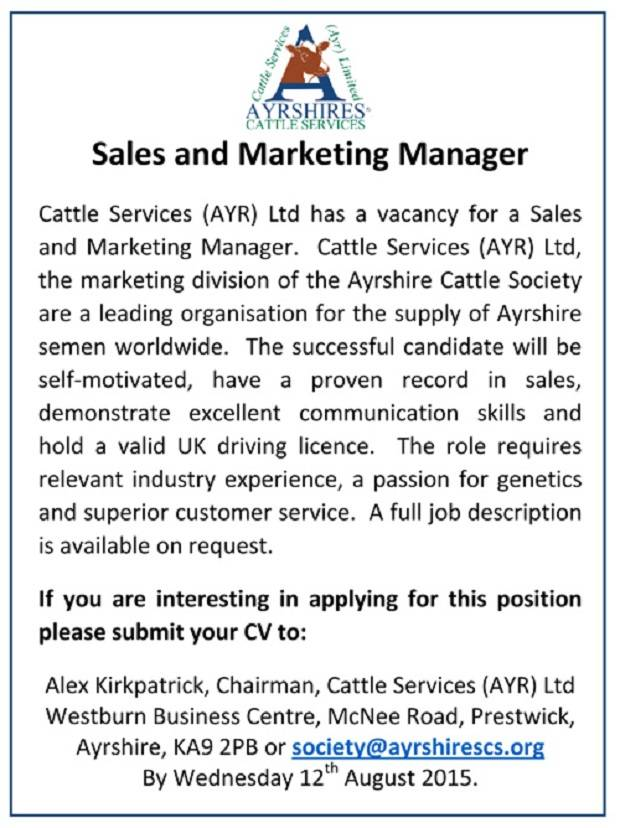 Position Of A Sales And Marketing Manager
