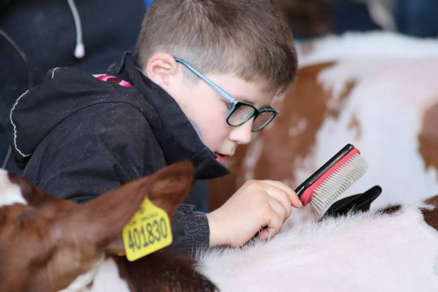 Young Breeders Field to Photo Competition