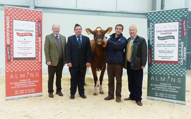 """Reserve Champion – Left to right - Mr Alex Kirkpatrick, Mr Stuart Williams, """"Cuthill Towers Regal Ray 11"""" with Mr James Lawrie and Sponsor Mr Archie Leitch."""