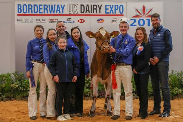 Junior Champion - Sandyford Triclo Fable