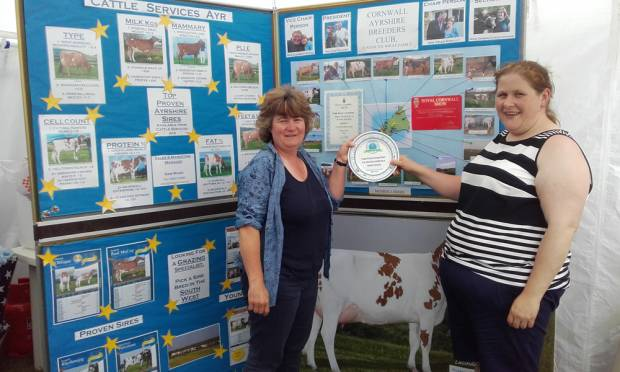 The Cornwall Ayrshire Breeders Club Won The Best Breed Society Stand