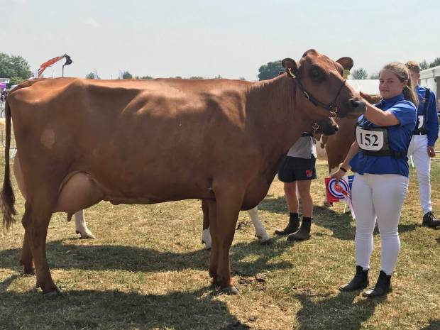 Kent Show 2018 Results